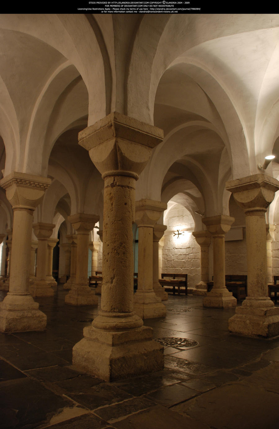 A Forest of Columns 2