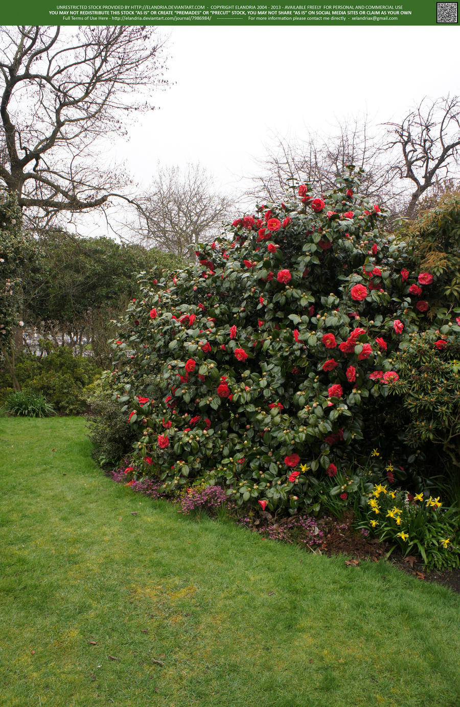 Into the Rose Garden 3 UNRESTRICTED by Elandria