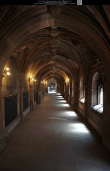 These Hallowed Halls 10