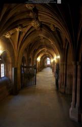 These Hallowed Halls 11