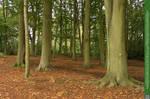 Woodlands  02 UNRESTRICTED