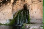 Dryads Grove 02 UNRESTRICTED by Elandria