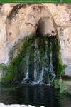 Dryads Grove 01 UNRESTRICTED by Elandria