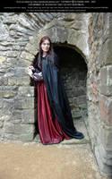 Rievaulx Abbey Ind Red 34 by Elandria