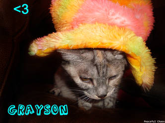Grayson by 69PeacefulChaos69