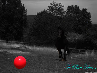 To Run Free by 69PeacefulChaos69