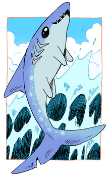 BettaBONUS - Shark