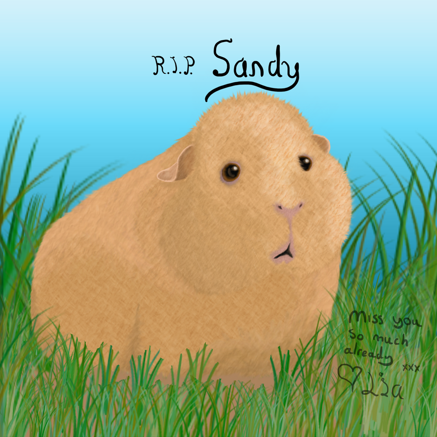 RIP Sandy by ComikzInk