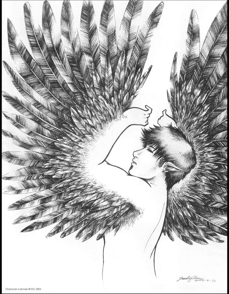 Wings of Aylenaer by SilentReaper