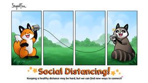 StupidFox - Social Distancing