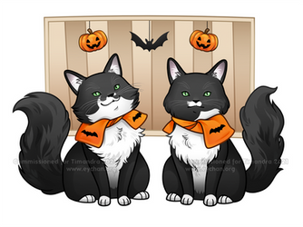 Milly and Molly Cats - Commission