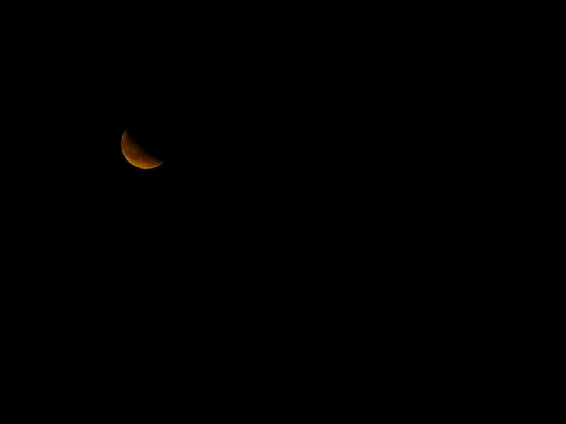 Blood Moon by BirdsFlyBackwards