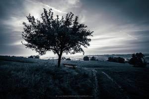 Until Kingdom Come by Unkopierbar