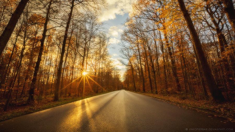 Roads Untraveled by Unkopierbar