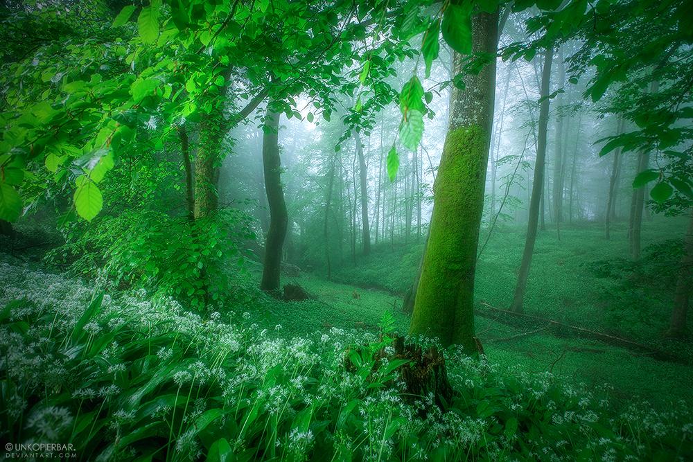 Spring Blues by Unkopierbar