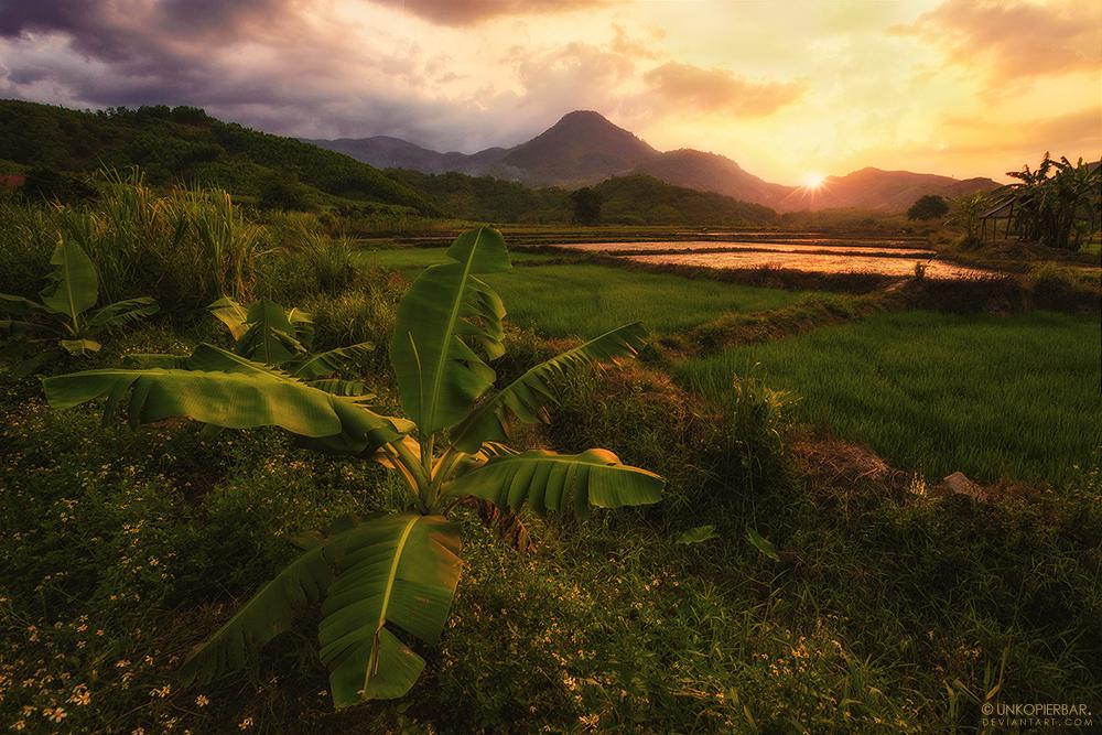 Good Morning, Vietnam! by Unkopierbar