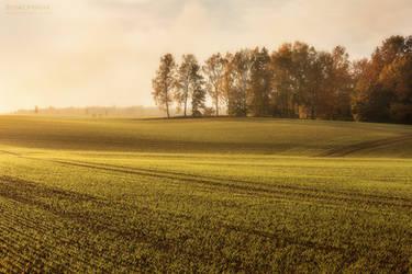 Rural Treasures I by Unkopierbar