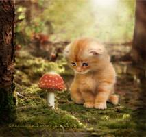 Heart Of The Forest by Kerri--Jo