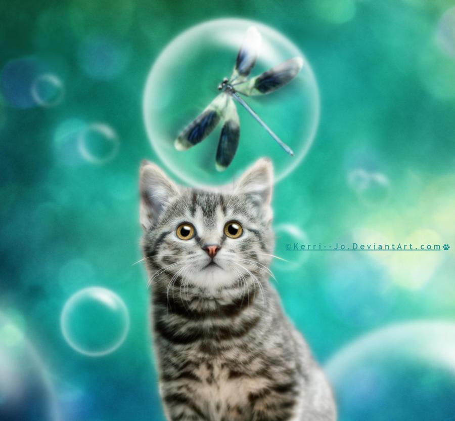 Bubble Dreams by Kerri--Jo