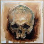 Oil painting skull study