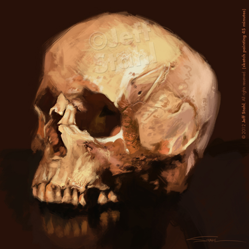 Digital Painting Skull Study