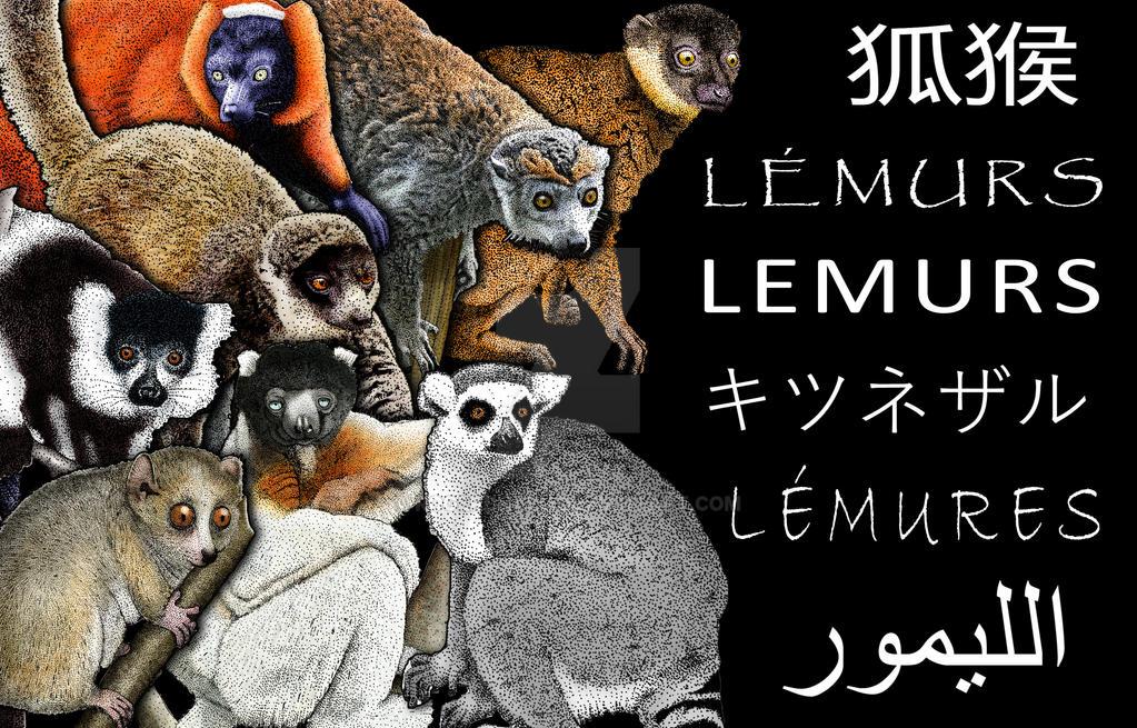 Lemurs-poster by rogerdhall