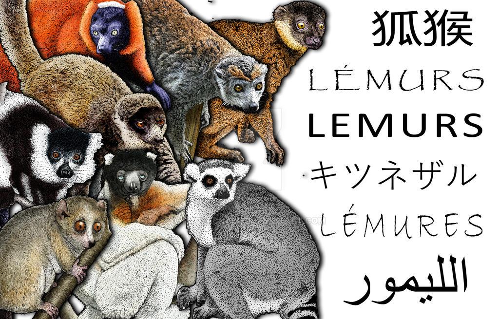 Lemur Collage by rogerdhall