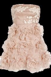 Short Pink Dress PNG