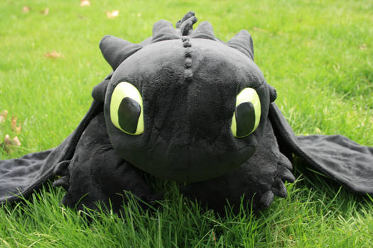 Toothless: I has new face?