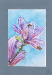 Flower #7 finished