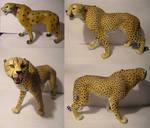 Cheetah, improve