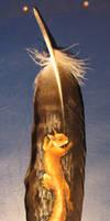 Feather for Markiz