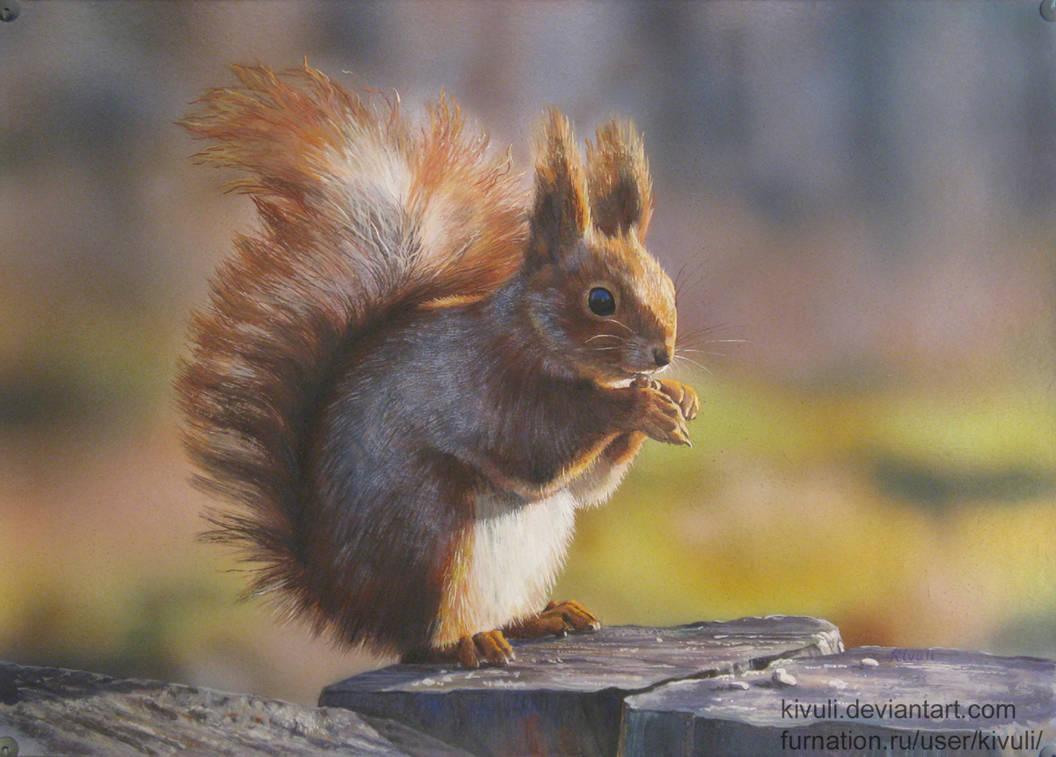 Squirrel painting