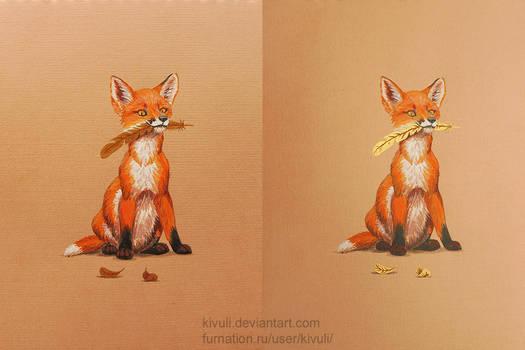 A fox cub's treasure