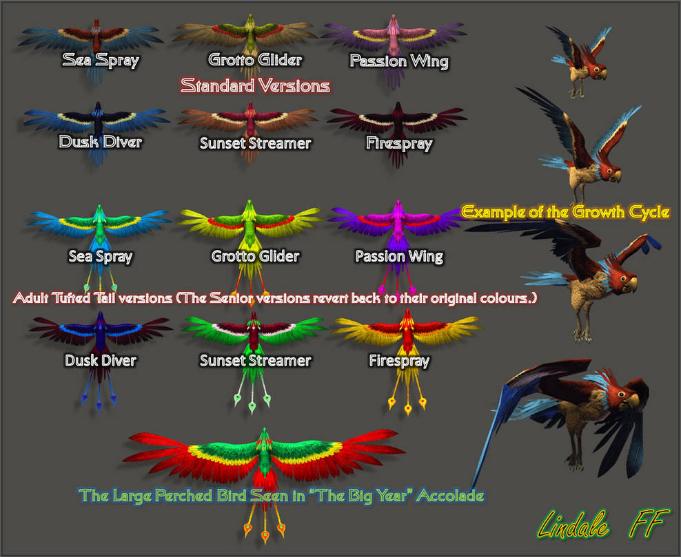 Risa Parrots by Lindale-FF
