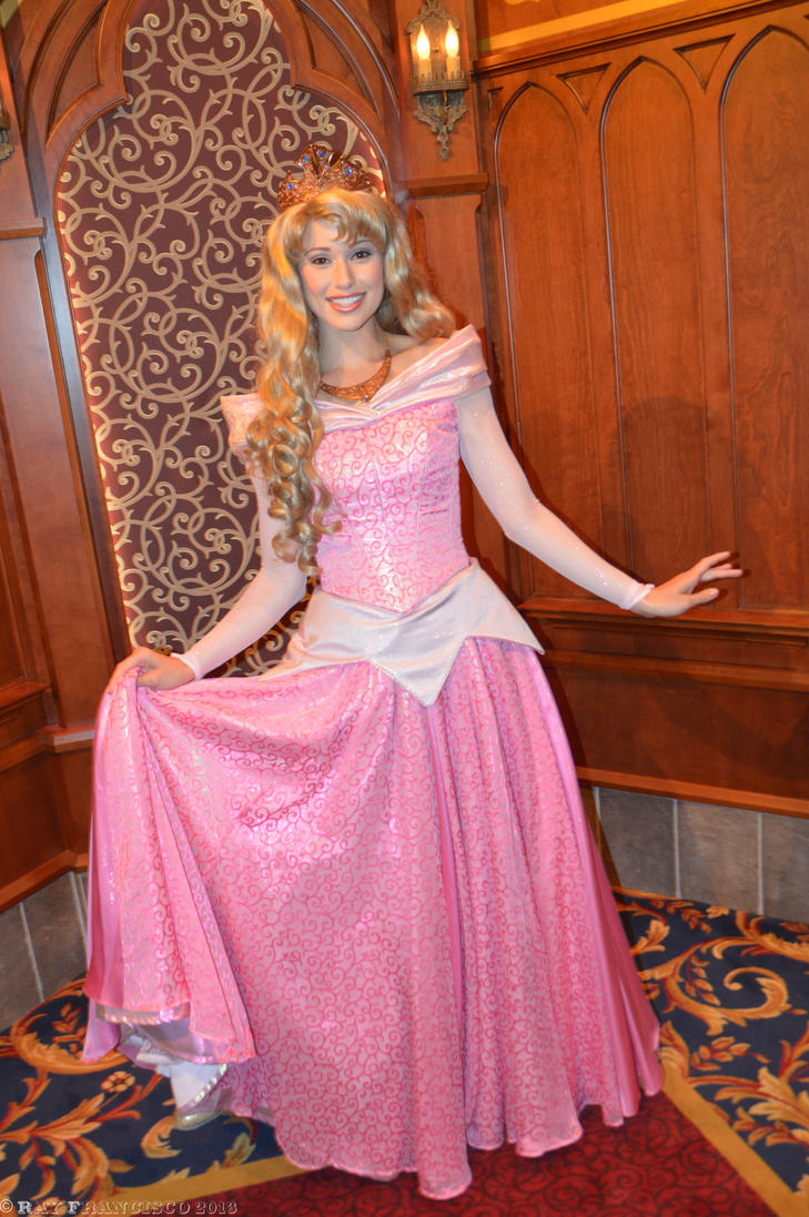 Princess Aurora s New ...