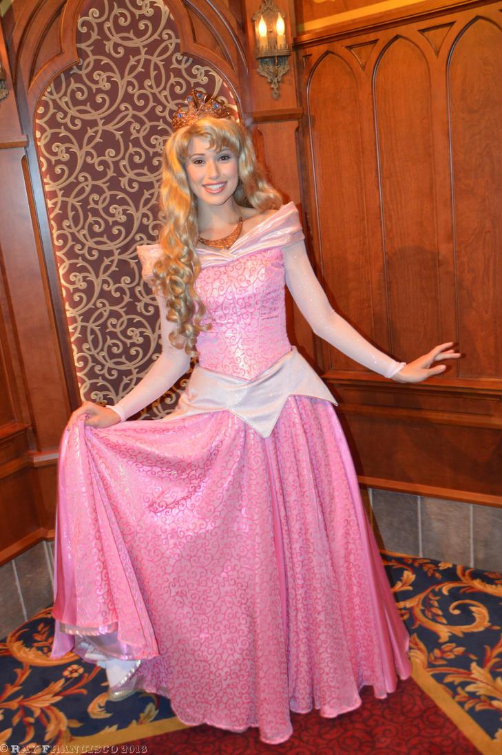Princess Aurora s New ...