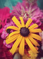 Sunshine by FlowerOfTheForest