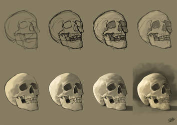 Study of a Skull: Walkthrough by NaamahVonhell