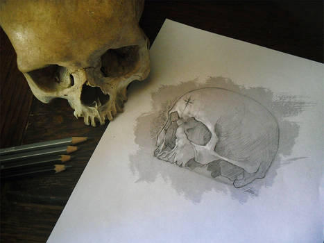 Skull Study Drawing | Practice