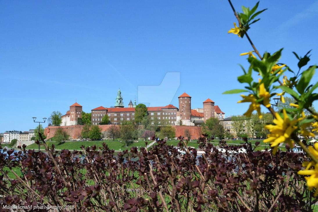Sunny Wawel Castle by Photograficzna