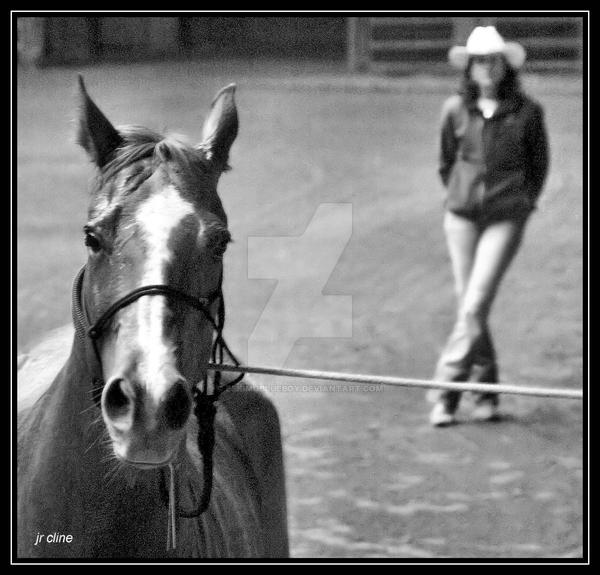 Horse Fair IV by eskimoblueboy