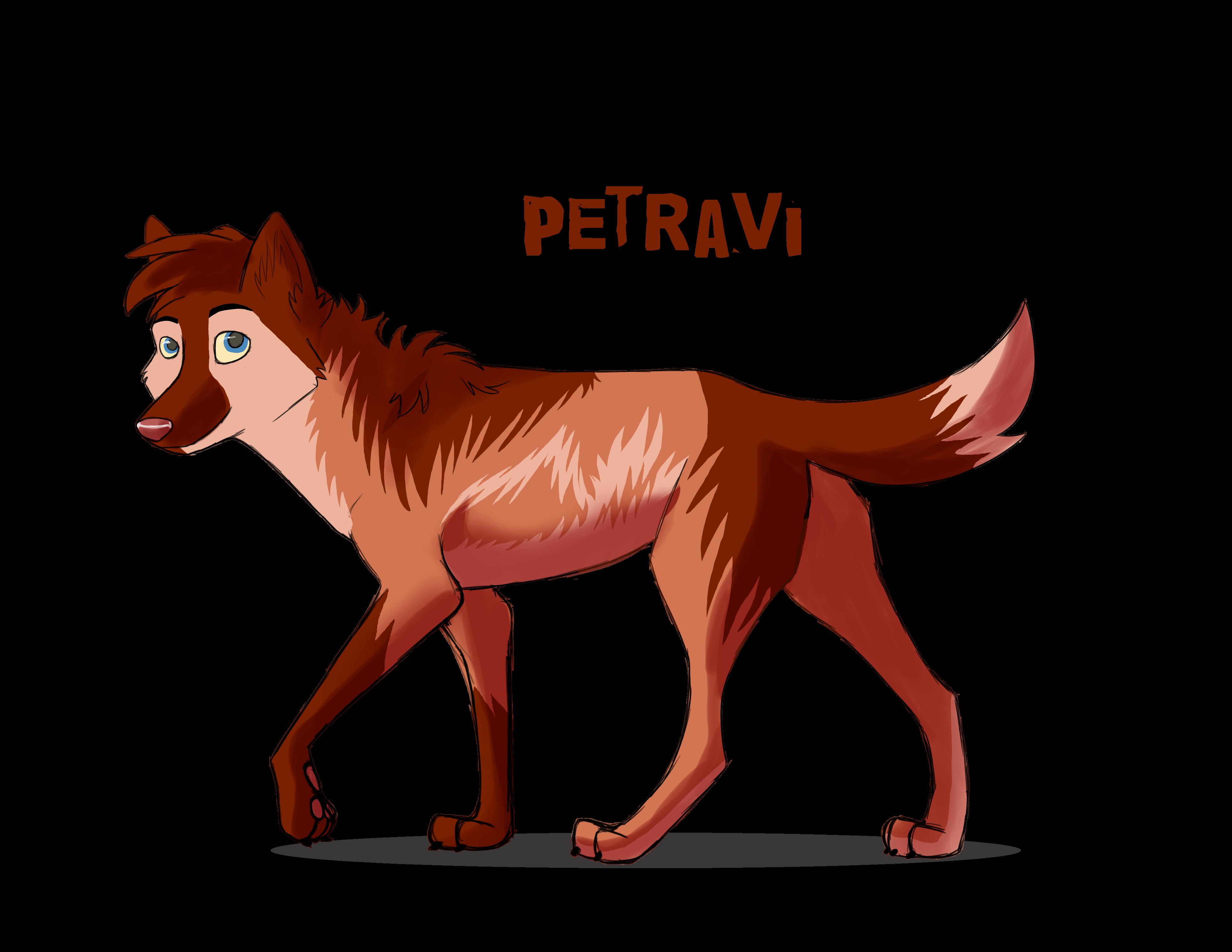 petravi's Profile Picture