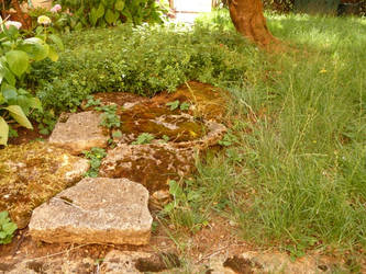 Stones in our garden by ithilwenia
