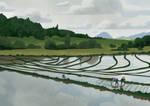 Rice pickers