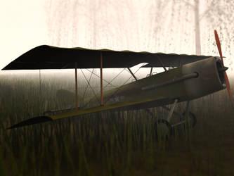 Biplane Abandoned