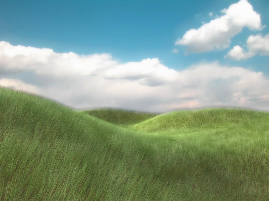 Grassy Meadow by netsui on DeviantArt