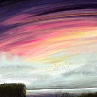 Colourful Sunset Coast