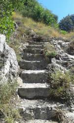 Stone Path 1