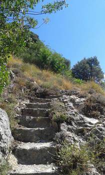 Stone Path 2